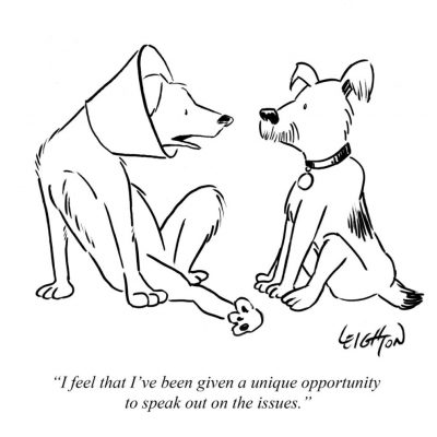 Dog-cone